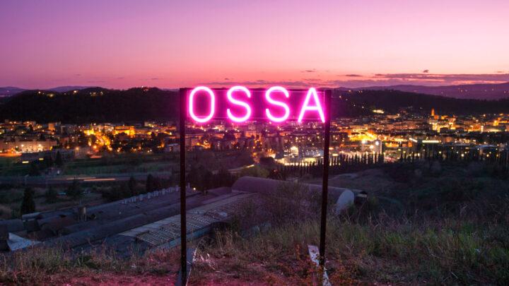 """""""Ossa"""" è il nuovo singolo de La Monarchia, prima co-produzione Flebo/Banana Studios su etichetta Flebo"""