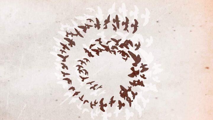 Un cerchio perfetto: Pensiero Nomade tra rock, jazz, world